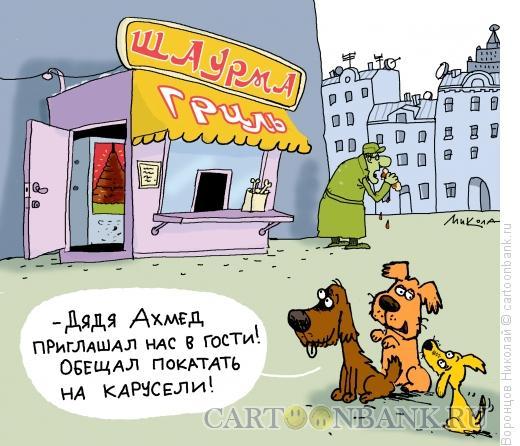 Карикатура: Шаурма, Воронцов Николай