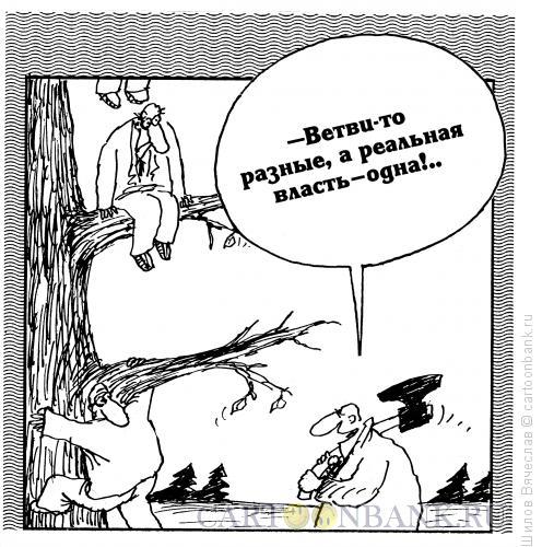 Карикатура: Реальные ветви власти, Шилов Вячеслав