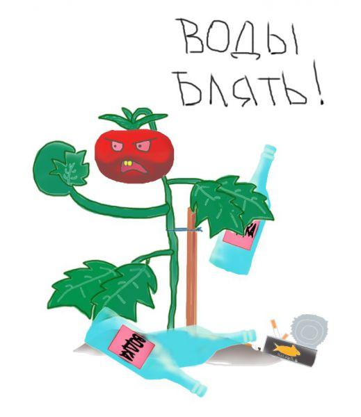 Карикатура: О дачной поливке помидор, SibRusich