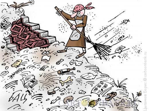 Карикатура: Новая метла, Цыганков Борис