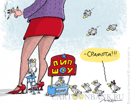 Карикатура: Пип-шоу, Воронцов Николай