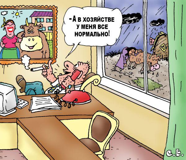 Карикатура: В хозяйстве все нормально, Ермилов Сергей