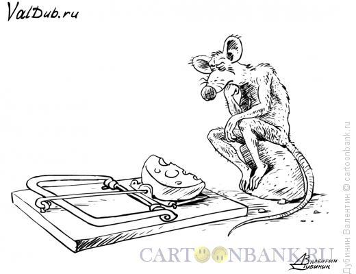 Карикатура: Бесплатный сыр и МЫШлитель, Дубинин Валентин