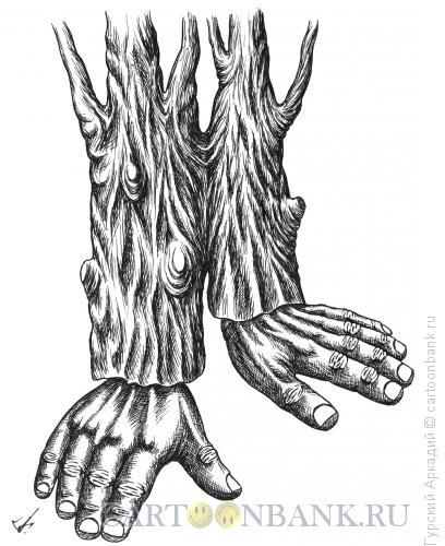 Карикатура: кисти рук, Гурский Аркадий