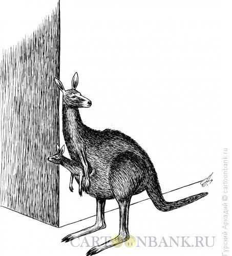 Карикатура: кенгуру, Гурский Аркадий