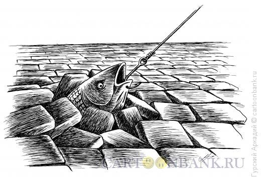 Карикатура: рыба в камнях, Гурский Аркадий