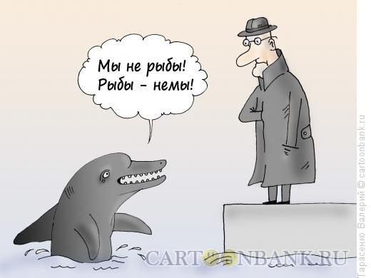 Карикатура: В дельфинарии, Тарасенко Валерий