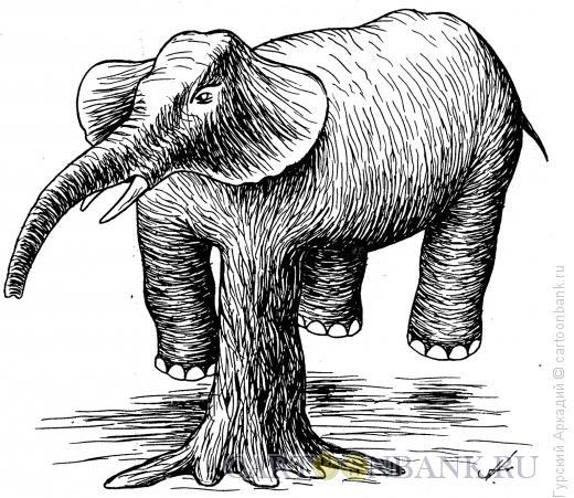 Карикатура: слон, Гурский Аркадий
