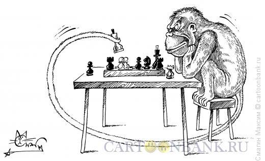 Карикатура: Игры разума, Смагин Максим