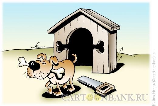 Карикатура: Пес и кость, Кийко Игорь