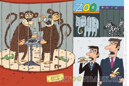 Карикатура: Приматы, Белозёров Сергей