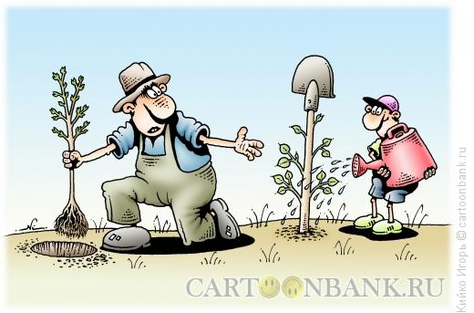 Карикатура: Саженец, Кийко Игорь