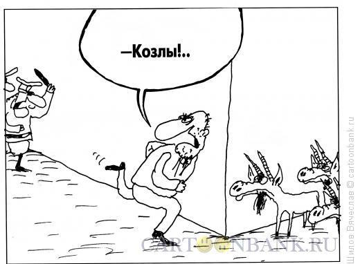 Карикатура: Настоящие козлы, Шилов Вячеслав