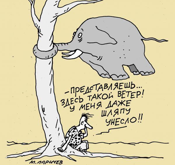Карикатура: шляпа, михаил ларичев