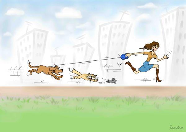 Карикатура: Побежали!, Сандро