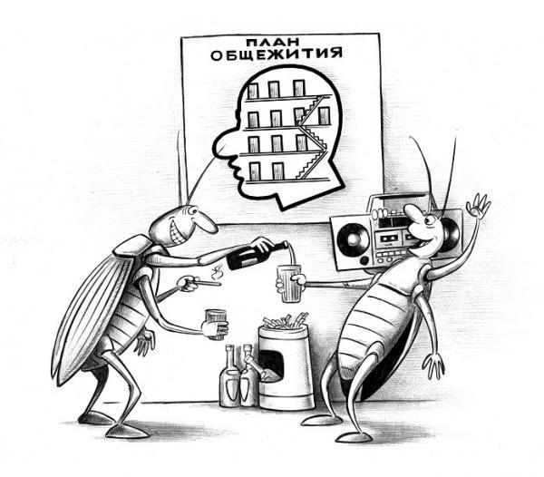 Карикатура: План общежития, Сергей Корсун