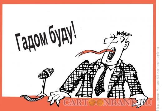 Карикатура: Обещание кандидата, Цыганков Борис
