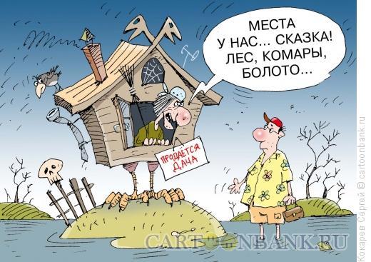 Карикатура: сказочное место, Кокарев Сергей