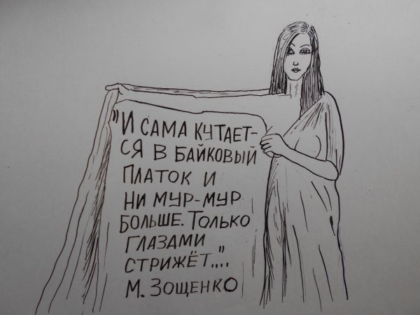 Карикатура: Женщина с покрывалом 4, Петров Александр