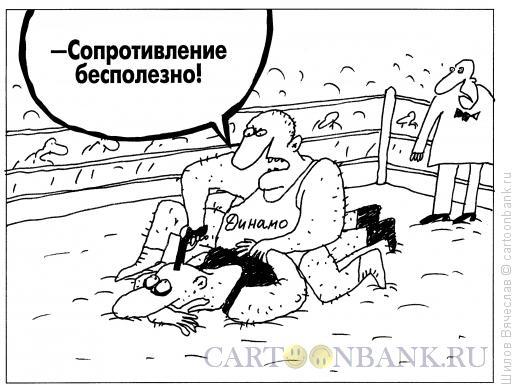 Карикатура: Динамо, Шилов Вячеслав