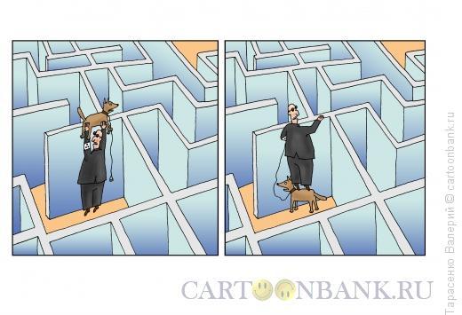 Карикатура: Лабиринт, Тарасенко Валерий