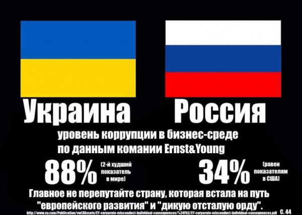 Мем: И они нам еще про коррупцию пишут!, Максим Камерер