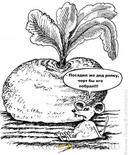 Карикатура: Посадил дед репку..., Мельник Леонид