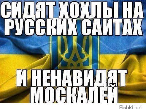Мем: Каждый день на этом сайте., Максим Камерер