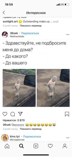 Мем: Поди откажи..., Максим Камерер