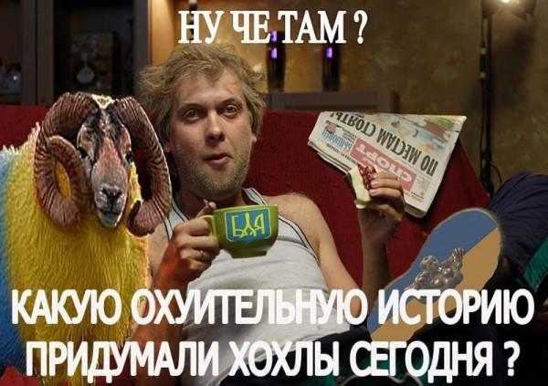 Мем: Что нам андрюша набрешет ныне?, Максим Камерер