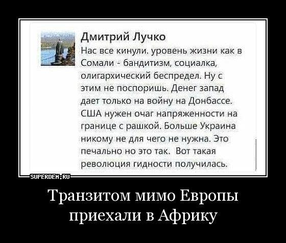 Мем: Дошло, наконец, Максим Камерер