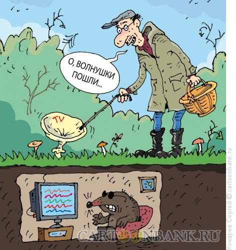 Карикатура: волнушки, Кокарев Сергей