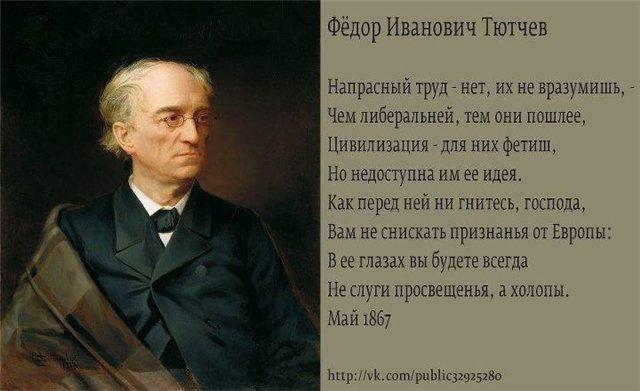 Мем: Тютчев о оппе., Максим Камерер