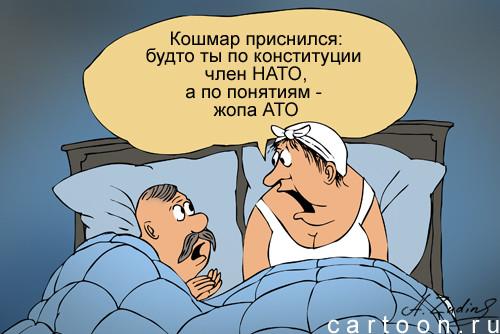 Карикатура: Член НАТО, Александр Зудин