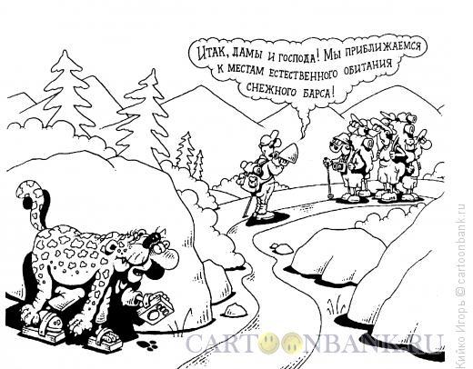 Карикатура: Снежный барс, Кийко Игорь