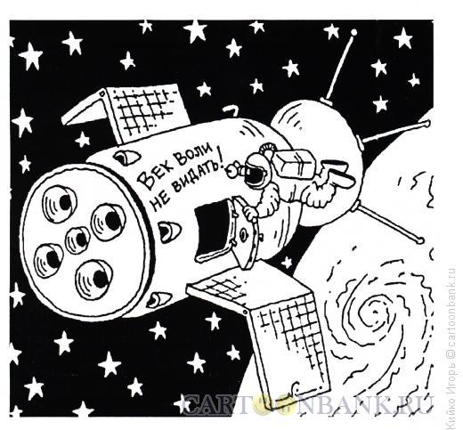Карикатура: Феня, Кийко Игорь