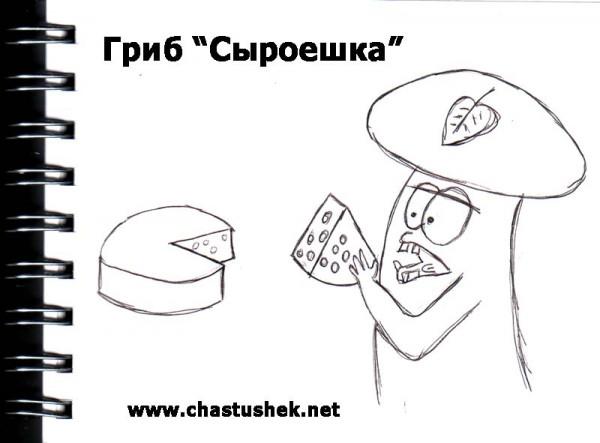 Карикатура: Гриб-сыроешька, chastushek