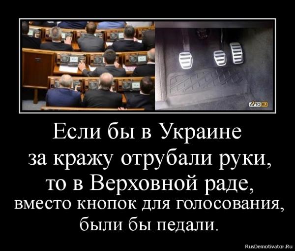 Мем: Будни дурдома, Максим Камерер