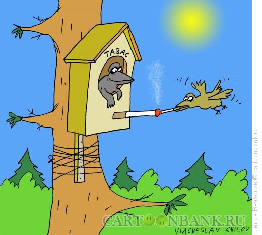 Карикатура: Табак, Шилов Вячеслав