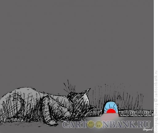 Карикатура: Солнце в норке, Богорад Виктор