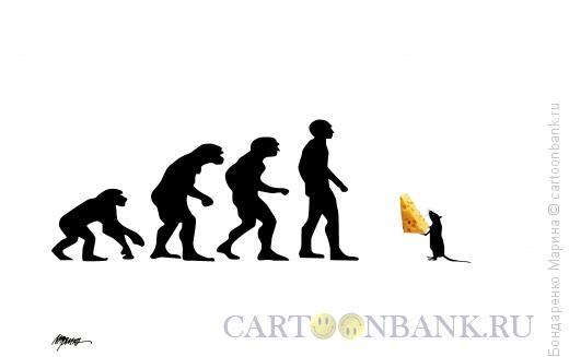 Карикатура: Эволюция и год Мыши, Бондаренко Марина