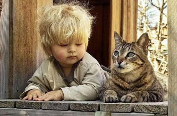 Мем: Детство — это когда твой кот старше тебя., Дед Макар