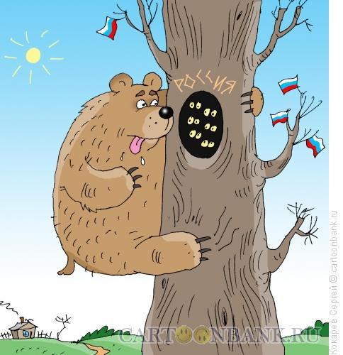Карикатура: медведь и пчелки, Кокарев Сергей