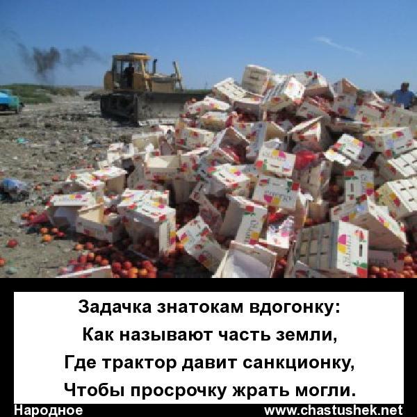 Мем: Санкции, chastushek