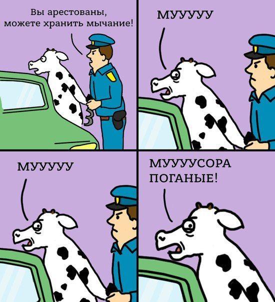 Карикатура: В Челябинской области арестовали корову
