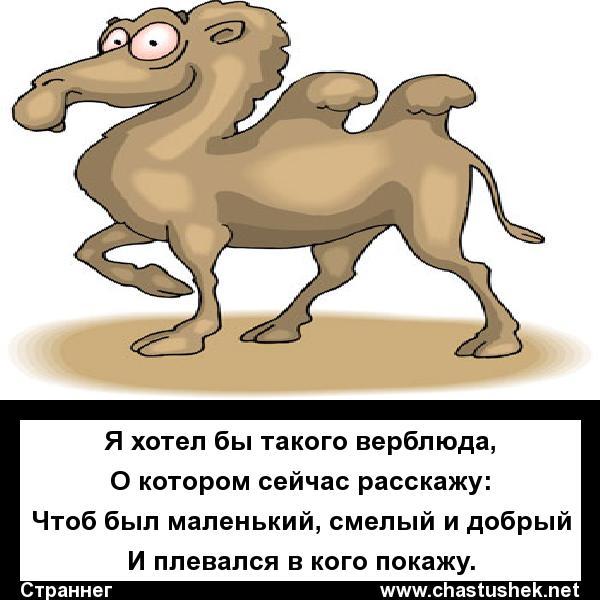 Мем: Хочу! Хочу!, chastushek