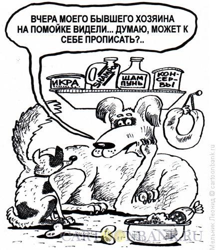 Карикатура: Жалость, Мельник Леонид