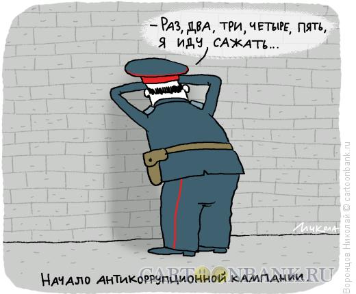 Карикатура: Антикоррупция, Воронцов Николай