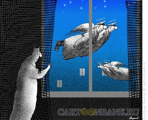 Карикатура: Ночной небесный патруль, Богорад Виктор