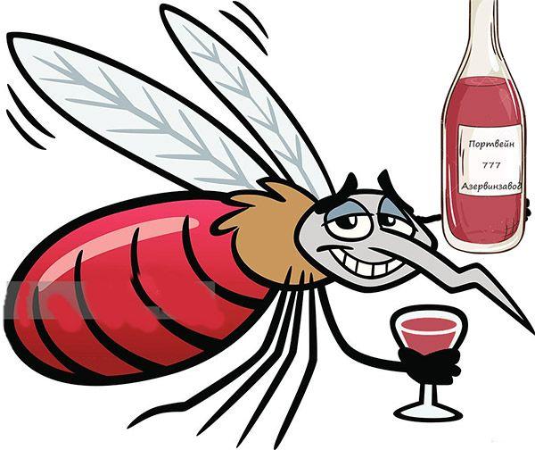 Мем: Кровью питаются только злые комарихи.  А папы-комары кровь не пьют!